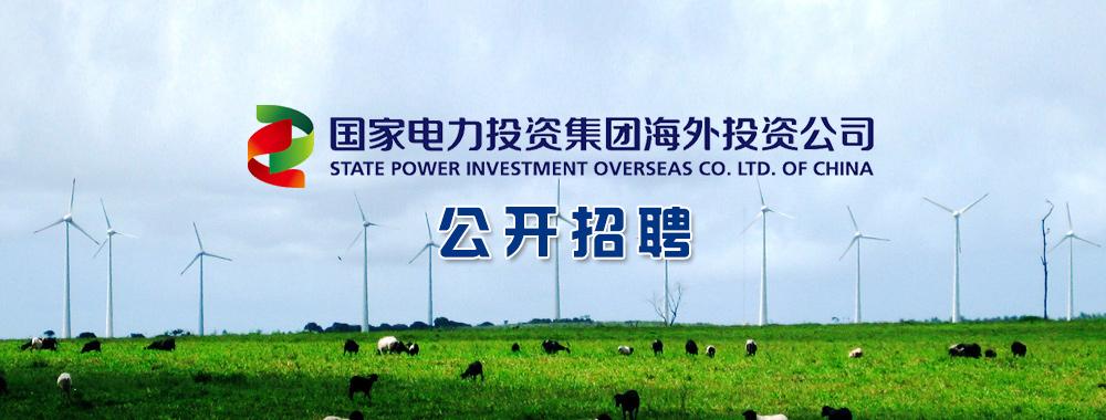 国家电力投资集团海外投资有限公司招聘信息_